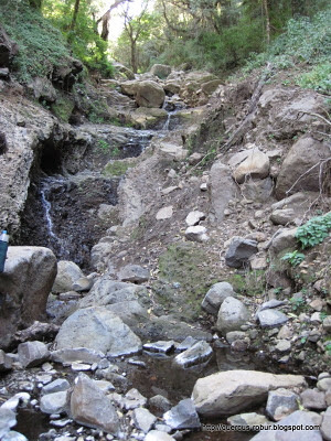 Cerro Viejo - Las 5 microcascadas
