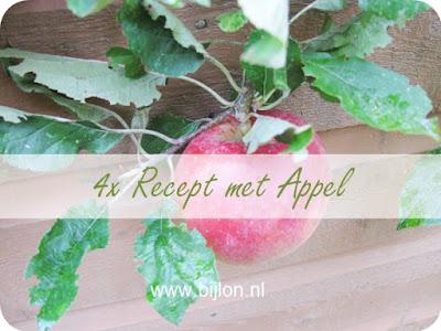 https://bijlon.blogspot.nl/2017/10/4x-recept-met-appel.html