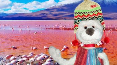 Pepo en Bolivia