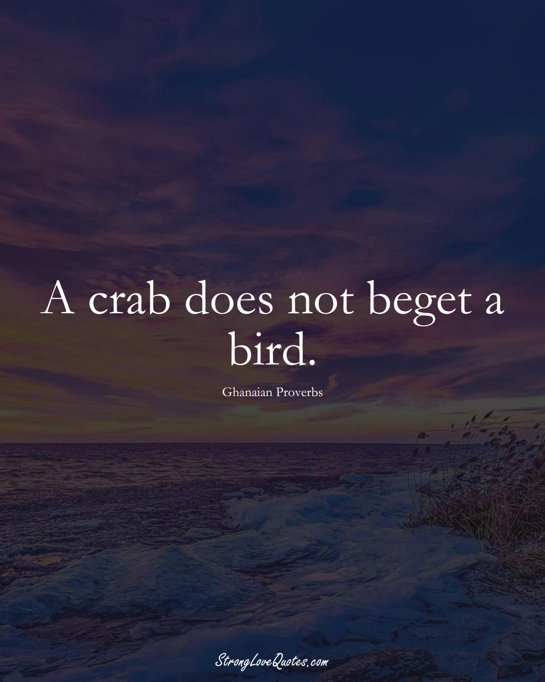 A crab does not beget a bird. (Ghanaian Sayings);  #AfricanSayings