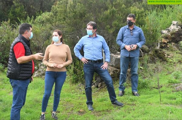 El programa '+Por el Hábitat' ha recuperado para el cultivo más de 150 hectáreas de terrenos abandonados en La Palma