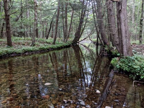 Platt Brook