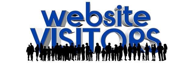 website-visitors