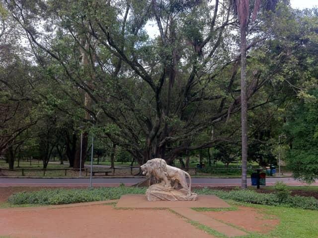 Parque Ibirapuera - Praça do Leão