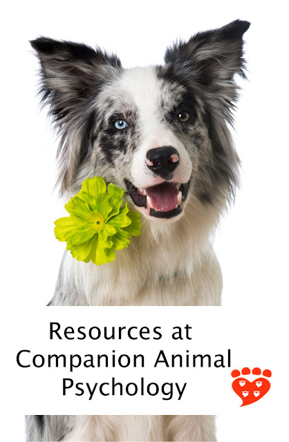 Resources for dog and cat people at Companion Animal Psychology blog