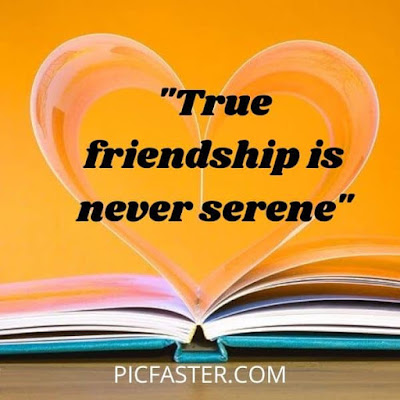 Latest - Friends Group Dp With Quotes For Whatsapp [2020]