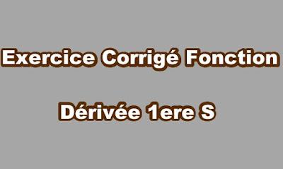 Fonction Dérivée Exercice Corrigé 1ere S