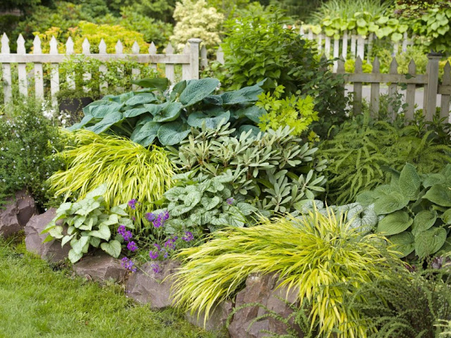 Restore and renew garden beds