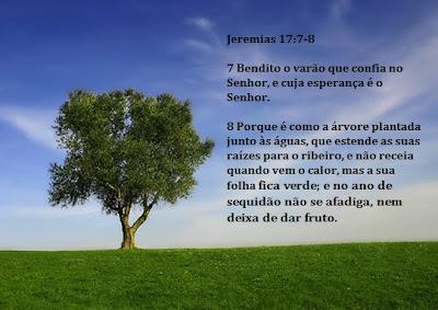 Resultado de imagem para Bendito o homem que confia no Senhor, cuja esperança é o Senhor; 8 é como a árvore plantada junto às águas,