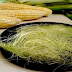 Benefits Of Corn Silk That You Didn't Know