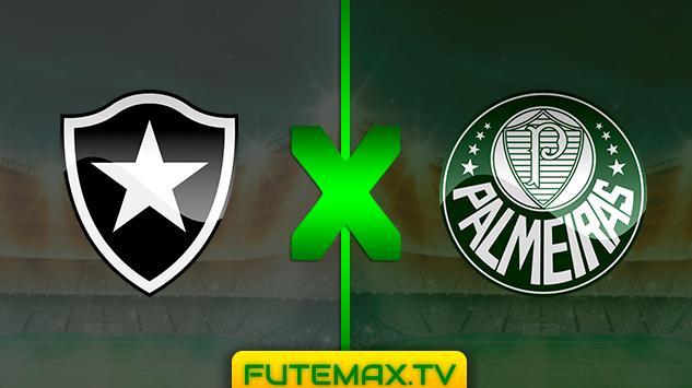 Assistir BOTAFOGO X PALMEIRAS ao vivo online - Campeonato Brasileiro Série A - 25/05/2019 16hs00 com transmissão do canal PREMIERE (FUTEMAX)