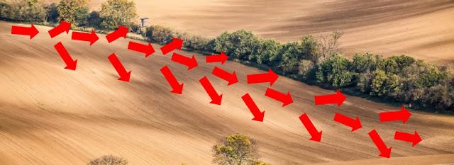 Foto Forma do terreno convexo, o fluxo de água e a variabilidade das características do solo.