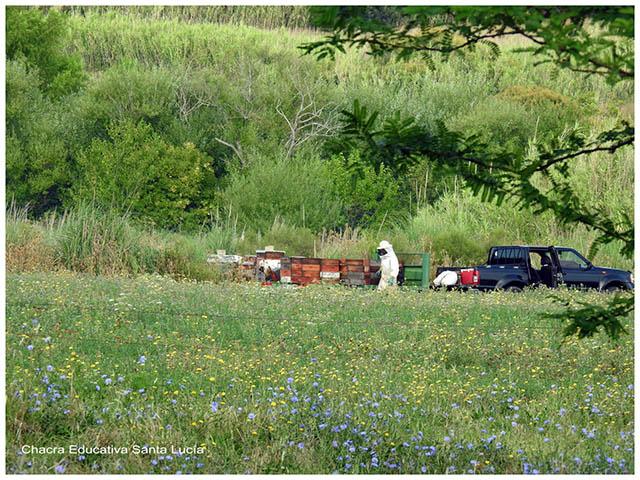 Llegaron los apicultores- Chacra Educativa Santa Lucía