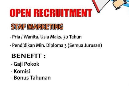 Info Lowongan Kerja Marketing Lautan Prima Jakarta