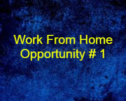 Opportunity # 1 Work From Home घर मे रहकर काम करे