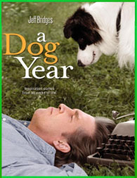 A Dog Year 2009 | DVDRip Latino HD Mega 1 Link
