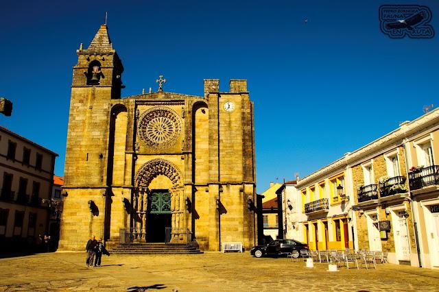 San Martiño. Iglesia en Noia. Noya