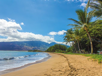 7 Best Beaches In Hawaii That You Must Visit Soon