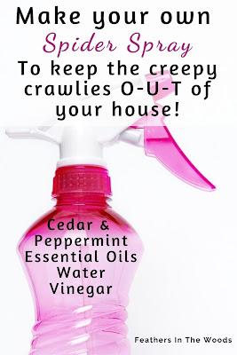 Natural Spider spray recipe