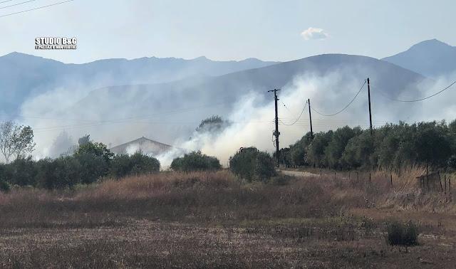 Ένταση με Ρομά σε κατασβεση φωτιά στην Αργολίδα - Χρειάστηκε η παρουσία της αστυνομίας