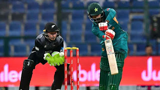 Pakistan vs New Zealand 1st T20I | 31st October 2018 Highlights