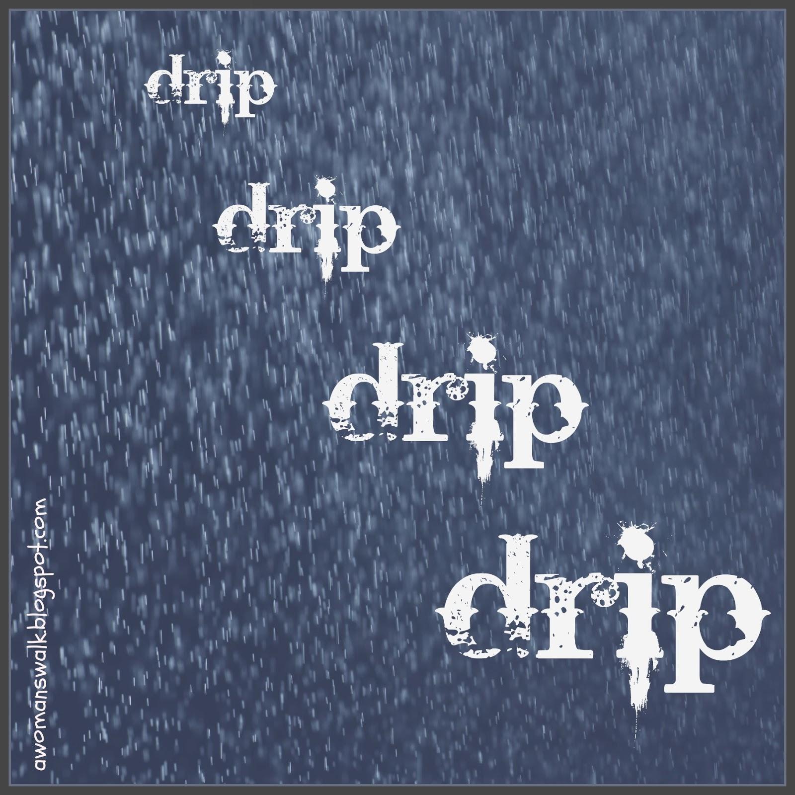 Rashel's Run: Are You A Dripping Wife?