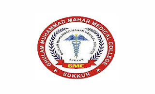 Ghulam Muhammad Mahar Medical College Hospital (GMMMC) Sukkur Jobs 2021 in Pakistan