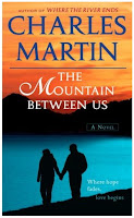 Image result for mountain between us movie