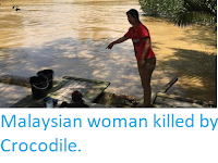 https://sciencythoughts.blogspot.com/2019/09/malaysian-woman-killed-by-crocodile.html