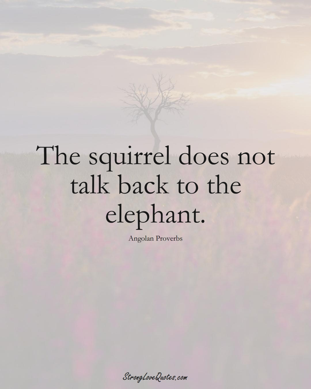 The squirrel does not talk back to the elephant. (Angolan Sayings);  #AfricanSayings