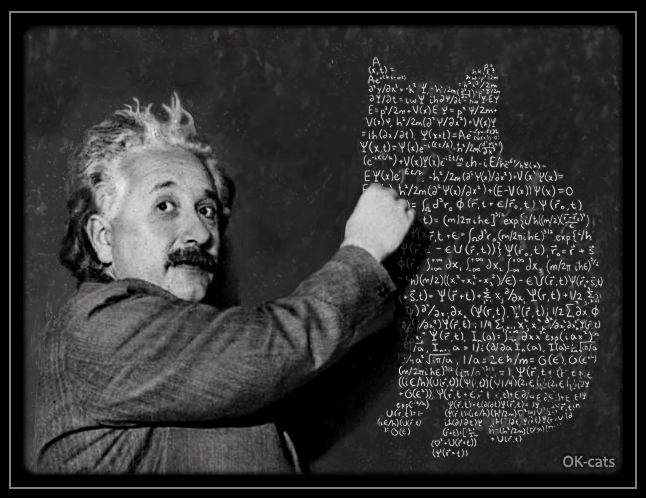 Photoshopped Cat picture • The evidence is irrefutable! Even Albert Einstein was a cat ♥ lover!