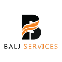 Graduate Freshers and Experienced Job Vacancy in Balj Services Private Limited Location Jaipur