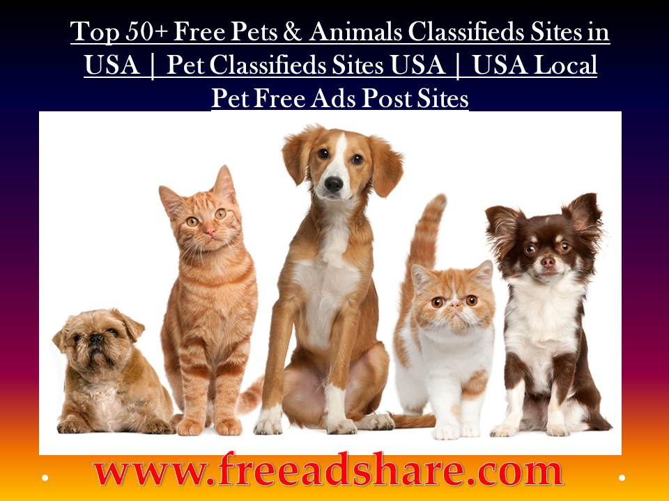 Top 50+ Free Pet Classified Site in USA   Best USA Pet Classified