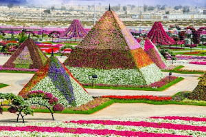 The Biggest Flower Garden