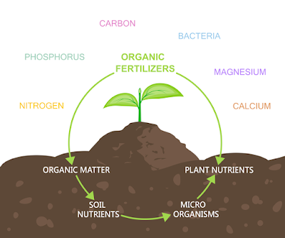 ORGANIC FERTILIZER OVERVIEW