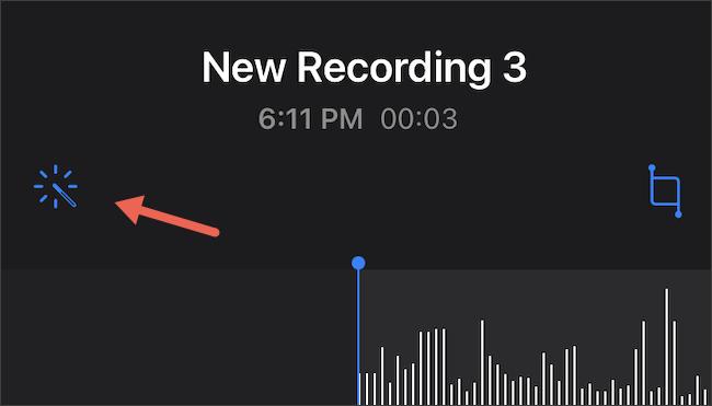 اضغط على التسجيل المحسن على المذكرات الصوتية على iPhone