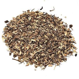 Echinacea-Majorana