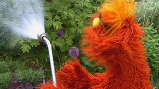 Murray and Ovejita learns about gardens and Murray plants flowers, Sesame Street Episode 4403 The Flower Show season 44