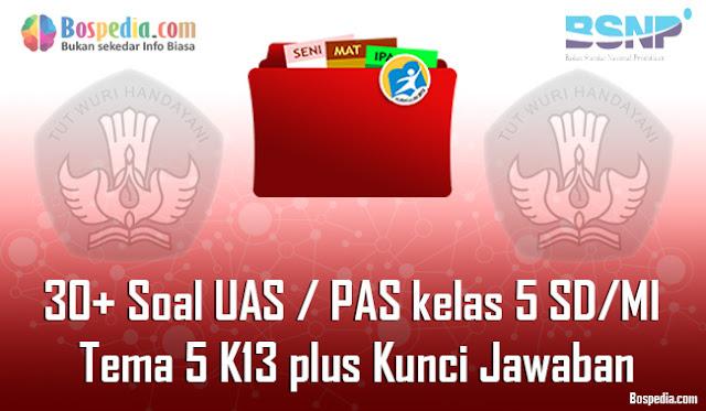 30+ Contoh Soal UAS / PAS untuk kelas 5 SD/MI Tema 5 K13 plus Kunci Jawaban