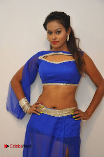Nisha Stills at Dharma Yogi Movie Audio Launch