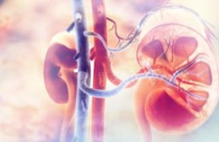 Daftar Dokter Spesialis Penyakit dalam Ginjal Hipertensi di Bogor yang Terbaik