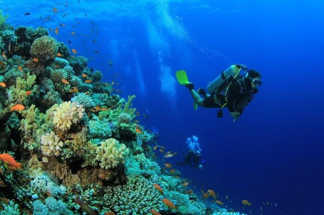 For Exciting Scuba Diving Malaysia is an Ideal Destination