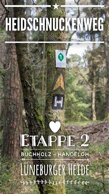 Heidschnuckenweg |¬ Etappe 2 Buchholz – Handeloh | Wandern Lüneburger Heide | Wanderung Nord Deutschland | Top Trails | 3D-Animation GPS-Track