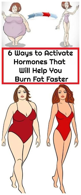 6 Ways to Activate Hormones That Will Help You Burn Fat Faster