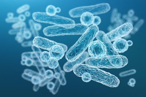 Acute bacterial prostatitis