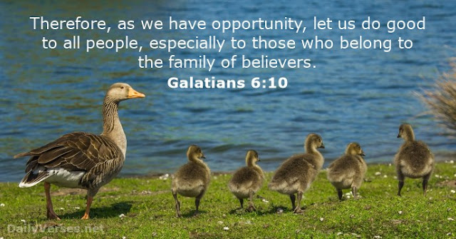 Therefore, as we have opportunity, let us do good to all people, especially to those who belong to the family of believers