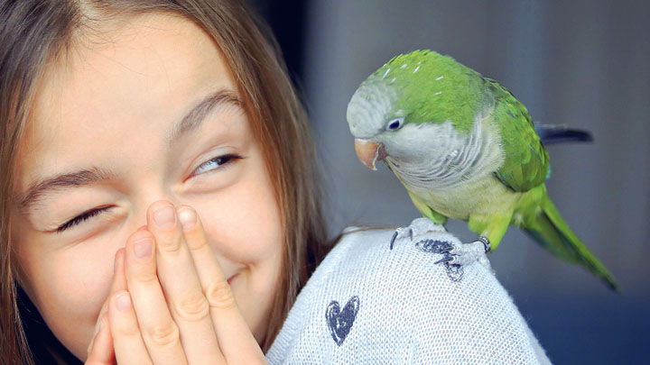How to Stop My Parrot From Biting Me