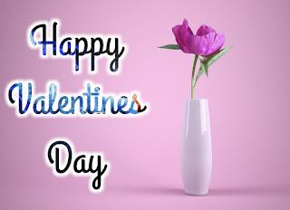 Valentines Day Photos Girlfriends & Boyfriends