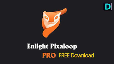 Enlight Pixaloop Pro  1.0.21 APK Download Latest Version for Android on www.DcFile.com