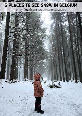 Belgium Winter Weather Brussels Snow Pinterest